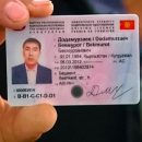 ЛДПР запретит гражданам Киргизии использовать национальные права в России