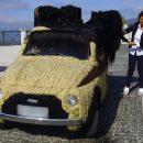 Видео: Итальянка сделала укладку своему маленькому шерстяному «Фиату»