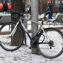 Велосипедисты получают преимущество перед водителями